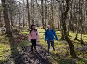 broadford-backpackers-hostel-cheap-fun-isle-of-skye-scotland forest